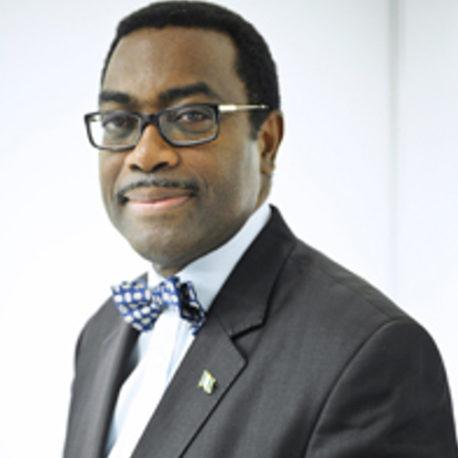 M. Akinwumi Adesina